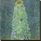 The Sunflower, c. 1906-1907 Stretched Canvas Print by Gustav Klimt