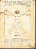 Vitruvisk mann Trykk på strukket lerret av Leonardo Da Vinci