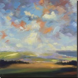 Sky and Land VI Stretched Canvas Print by Robert Seguin