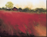 Red Land Stretched Canvas Print by Thomas Stotts