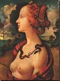 Portrait of Simonetta Vespucci, c. 1480 Stretched Canvas Print by Piero di Cosimo Vespucci
