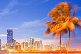 City of Miami Florida Night Skyline Palm Trees Photographic Print by  Fotomak