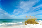 Beautiful Florida Coastline Photographic Print by  EyeMark