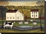 White Farm Stretched Canvas Print by Diane Ulmer Pedersen