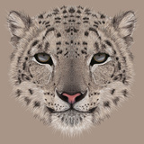 Illustrative Portrait of a Snow Leopard. Irbis or Barys. Art by  ant_art19