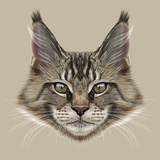 Illustration Portrait of Maine Coon Cat. Cute Young Domestic Cat with Green Eyes and Wild Colour. Prints by  ant_art19