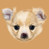 Illustrative Portrait of Chihuahua Puppy. Cute White Puppy with Apricot Spots on Skin. Poster by  ant_art19