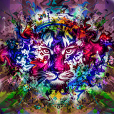 Tiger Multicolor Poster by  reznik_val