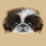 Illustrated Portrait of Pekingese Dog Posters by  ant_art19