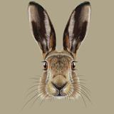 Illustrated Portrait of Hare Reproduction giclée Premium par  ant_art19