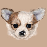 Illustrative Portrait of Chihuahua Puppy. Cute Long Hair Bi-Colour Puppy. Prints by  ant_art19