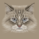 Illustrative Portrait of Siberian Cat. Cute Domestic Colour Point Cat with Blue Eyes. Print by  ant_art19