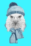 Portrait of Eagle with Hat and Scarf. Hand Drawn Illustration. ポスター :  victoria_novak