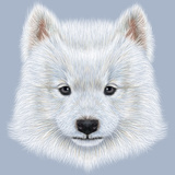 Illustrated Portrait of Samoyed Dog. Poster by  ant_art19