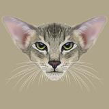 Illustrative Portrait of Oriental Cat. Very Beautiful Domestic Cat Tabby Coat Print with Green Prints by  ant_art19