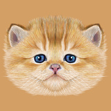 Illustrative Portrait of Domestic Kitten. Cute Peach Kitten with Blue Eyes. Premium Giclee Print by  ant_art19