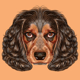 Illustrative Portrait of Spaniel Dog. Cute Young Russian Hunting Spaniel. Premium Giclee Print by  ant_art19