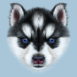 Illustrative Portrait of a Husky Puppy. Cute Head of Bicolour Puppy with Blue Eyes. Poster by  ant_art19