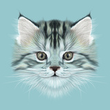 Illustrative Portrait of Domestic Kitten. Cute Grey Tabby Kitten. Posters by  ant_art19