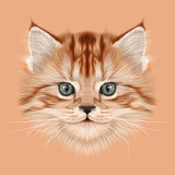 Illustrative Portrait of Domestic Kitten. Cute Red Tabby Kitten. Posters by  ant_art19