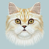 Illustrated Portrait of Persian Cat. Prints by  ant_art19