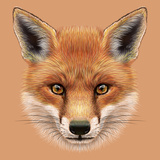 Illustrative Portrait of a Red Fox. the Cute Fluffy Face of Forest Fox. Prints by  ant_art19