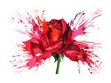 Flower Prints by  okalinichenko