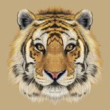Illustrative Portrait of a Tiger. Beautiful Face of Big Cat. Prints by  ant_art19
