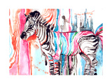 Zebra Prints by  okalinichenko