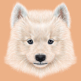 Illustrated Portrait of Samoyed Dog. Prints by  ant_art19