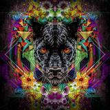 Panther Plakater af  reznik_val