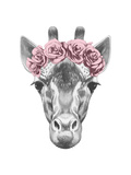 Portrait of Giraffe with Floral Head Wreath. Hand Drawn Illustration. Print by  victoria_novak