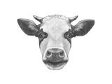 Portrait of Cow. Hand Drawn Illustration. Art by  victoria_novak