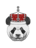Original Drawing of Panda with Crown. Isolated on White Background Affischer av  victoria_novak