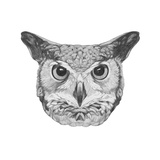 Original Drawing of Owl. Isolated on White Background Posters van  victoria_novak