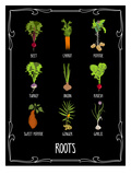 Garden Roots Posters by Brooke Witt
