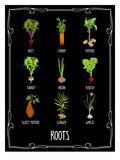 Garden Roots Lámina por Brooke Witt