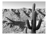 Gates Pass Bw Prints by Murray Bolesta