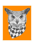 Original Drawing of Owl with Scarf. Isolated on Colored Background Prints by  victoria_novak