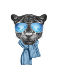 Portrait of Panther with Mirror Sunglasses and Scarf. Hand Drawn Illustration. Prints by  victoria_novak