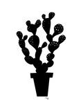 Desert Cactus Poster by Ashlee Rae