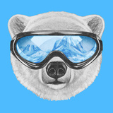Portrait of Polar Bear with Ski Goggles. Hand Drawn Illustration. Posters by  victoria_novak