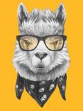 Portrait of Lama with Glasses and Scarf. Hand Drawn Illustration. Plakat af  victoria_novak