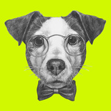 Original Drawing of Jack Russell with Glasses and Bow Tie. Isolated on Colored Background Prints by  victoria_novak