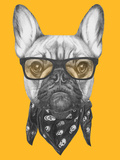 Portrait of French Bulldog with Glasses and Scarf. Hand Drawn Illustration. Prints by  victoria_novak