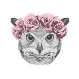 Original Drawing of Owl with Floral Head Wreath. Isolated on White Background. Poster van  victoria_novak
