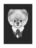 Portrait of Pomeranian Dog in Suit. Hand Drawn Illustration. Posters by  victoria_novak