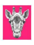 Portrait of Giraffe. Hand Drawn Illustration. Hand Drawn Illustration. Prints by  victoria_novak