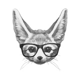 Original Drawing of Fennec Fox with Glasses. Isolated on White Background Prints by  victoria_novak