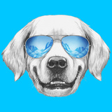 Portrait of Golden Retriever with Mirror Sunglasses. Hand Drawn Illustration. Prints by  victoria_novak